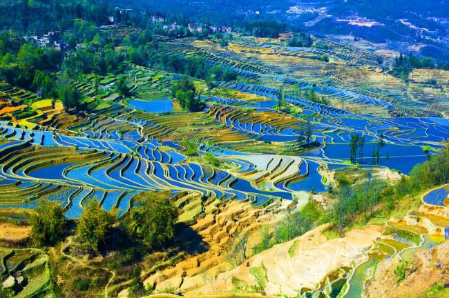 14. Ruộng bậc thang Nguyên Dương: Những cánh đồng ruộng bậc thang ở tỉnh Vân Nam trông nhưng một bức tranh vẽ tuyệt đẹp.