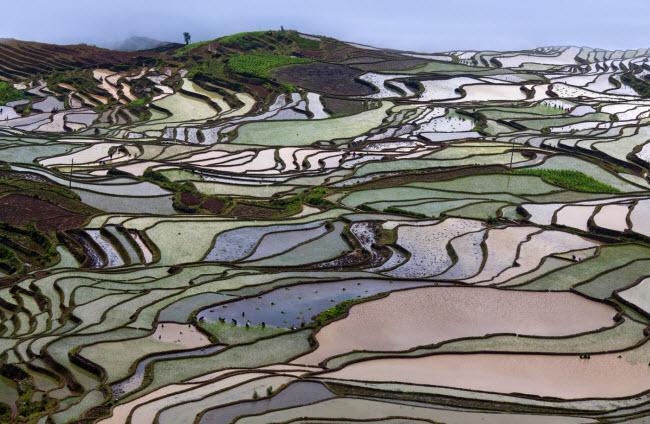 Ruộng bậc thang Nguyên Dương là một trong những địa điểm du lịch hấp dẫn nhất ở Trung Quốc và là biểu tượng văn hóa của quốc gia này.