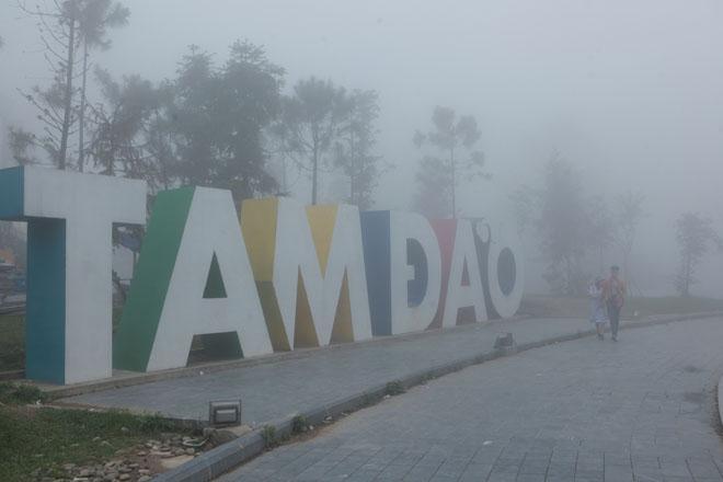 Ảnh: Sương mù giăng kín lối, Tam Đảo đẹp tựa trời Âu - 1