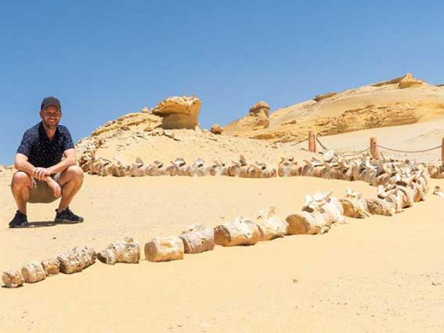 Bí ẩn thung lũng cá voi kỳ lạ giữa sa mạc khô cằn