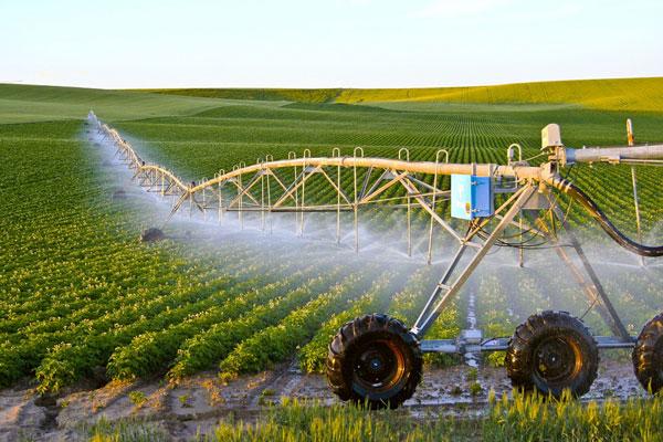 Bất động sản nông nghiệp sao vẫn mơ hồ? - 1