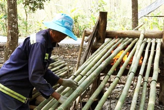 Nghề lạ ở An Giang: Đốt lửa nướng tầm vông ở vùng Bảy Núi - 1