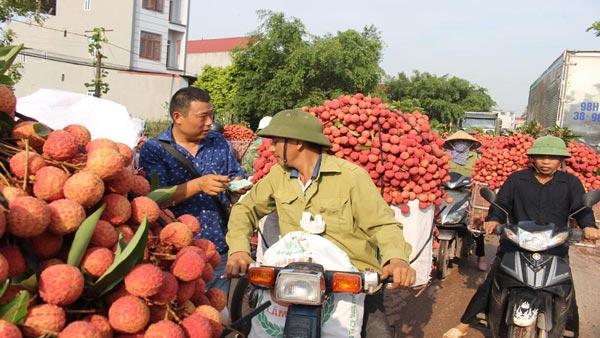 https://image-us.24h.com.vn/upload/2-2019/images/2019-06-03/dang-co-200-thuong-nhan-Trung-Quoc-mua-vai-thieu-o-Bac-Giang-b11-1559523038-383-width600height338.jpg