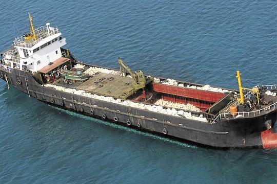 Ngư dân Philippines phản đối Trung Quốc bắt ngao khổng lồ ở biển Đông - 1