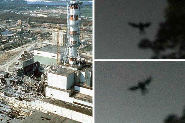 Quái vật huyền thoại xuất hiện ngay trước thảm kịch hạt nhân Chernobyl? - 1