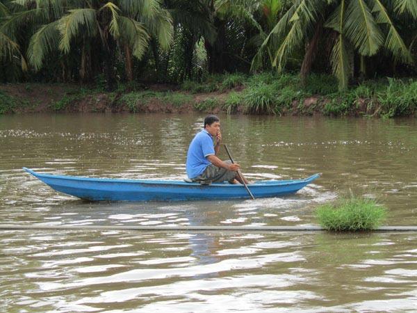 Làm giàu ở nông thôn: Đổi đời nhờ nuôi loài cá bông lau - 1