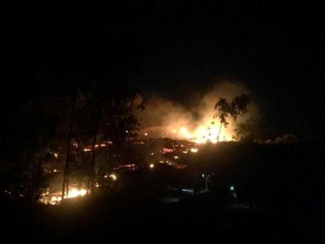 Cháy rừng thông sát trường học, học sinh ào ra dập lửa