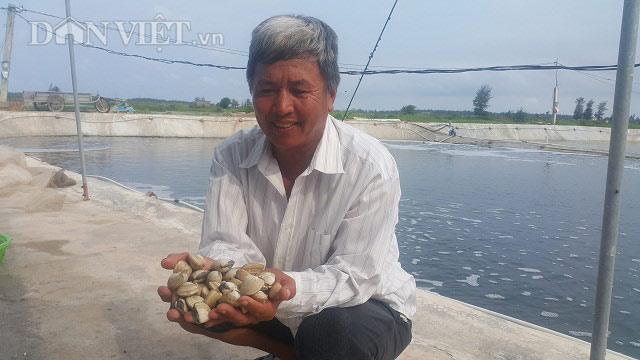 Làm giàu ở nông thôn: Xây ao nổi cho ngao đẻ, có tiền tỷ mỗi năm - 1