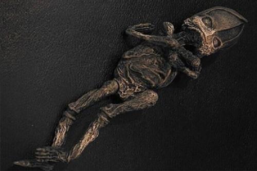 Sinh vật bị nghi là người ngoài hành tinh ở Nga cách đây 23 năm - 1