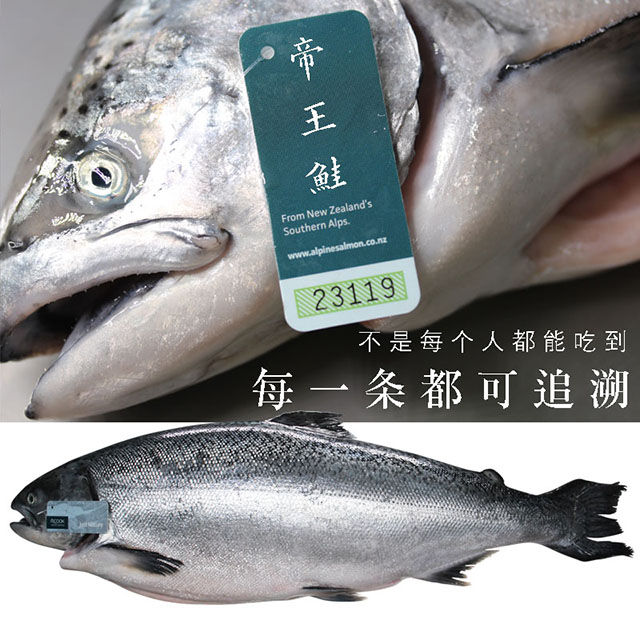 """Những loại hải sản có giá đắt """"cắt cổ"""" nhưng giới nhà giàu không tiếc tiền để mua - 1"""