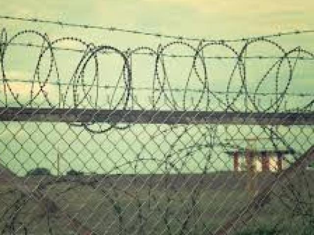 Kinh hoàng thi thể không nguyên vẹn bên hàng rào: Vụ giết người tàn bạo
