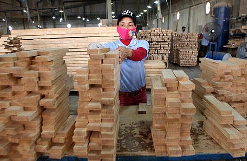 Trung Quốc ồ ạt đầu tư ngành gỗ, chiêu né thương chiến Mỹ - Trung? - 1