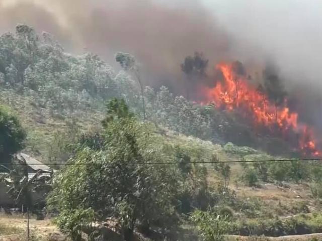 Tham gia dập lửa cứu rừng, người phụ nữ bị thiêu cháy