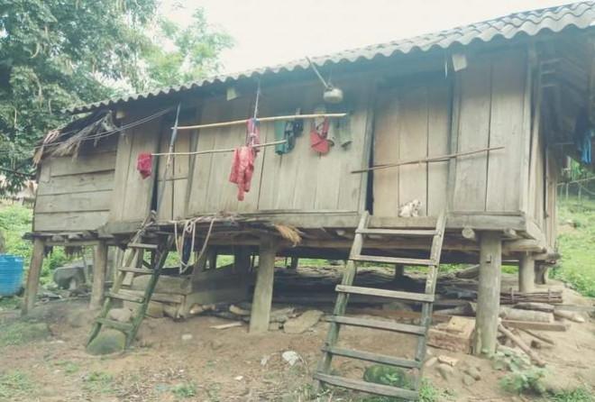 Sau khi xem ti vi, 20 người Mày bỏ nhà vào rừng trốn Covid-19 - 1