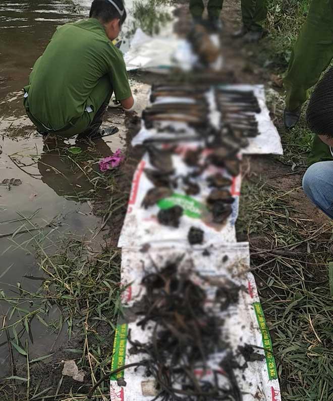 Phát hiện 4 bộ xương người ở gần bờ sông Sài Gòn - 1