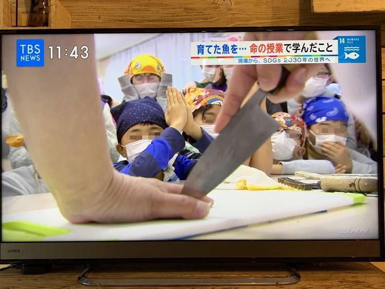 Lớp học ở Nhật Bản để học sinh tiểu học ăn thịt vật nuôi khiến các em đau lòng khóc thét - 1