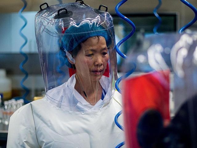 Giám đốc phòng thí nghiệm sinh học lớn bậc nhất Mỹ nói về Viện Virus học Vũ Hán