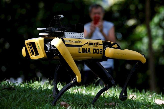 Robot chó nhắc người dân Singapore giãn cách xã hội - 1