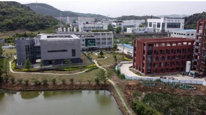 Tình báo Mỹ xem xét thông tin phòng thí nghiệm Vũ Hán gặp sự cố trước dịch Covid-19 - 1