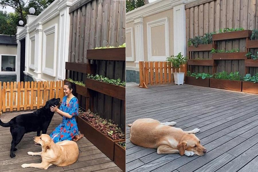 Không phải biệt thự trắng triệu đô nhà chồng, Tăng Thanh Hà đang sống trong cơ ngơi đẹp như tranh - 4