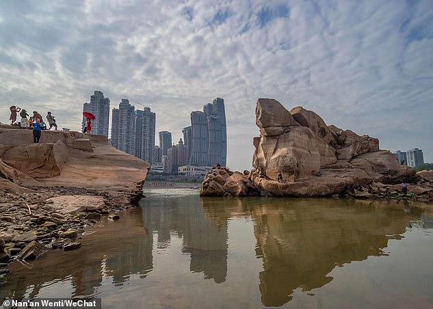 Du khách đổ xô đi xem rùa đá khổng lồ ở Trung Quốc - 1