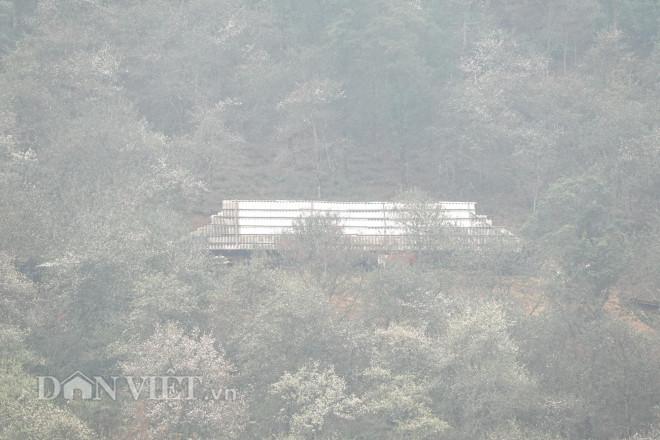 Băng rừng chinh phục đỉnh Lùng Cúng cao hơn 2.900m - 1