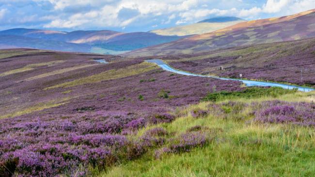 Cairngorms, Scotland: Vườn quốc gia Cairngorms được đánh giá là một trong những địa điểm có phong cảnh thiên nhiên nguyên sơ nhất ở Anh quốc.