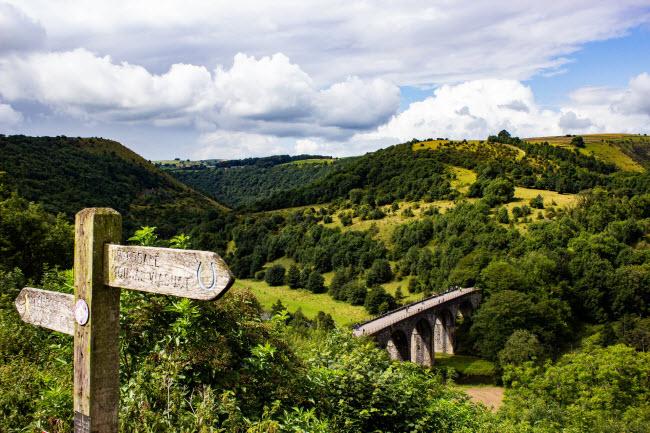 Màu xanh của cây cối phủ khắp thung lũng Monsal Dale ở vùng Derbyshire.
