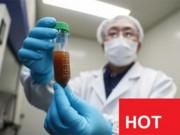 Tin tức sức khỏe - VTV1 đưa tin hy vọng mới cho bệnh nhân hen suyễn, ho, đàm, khó thở