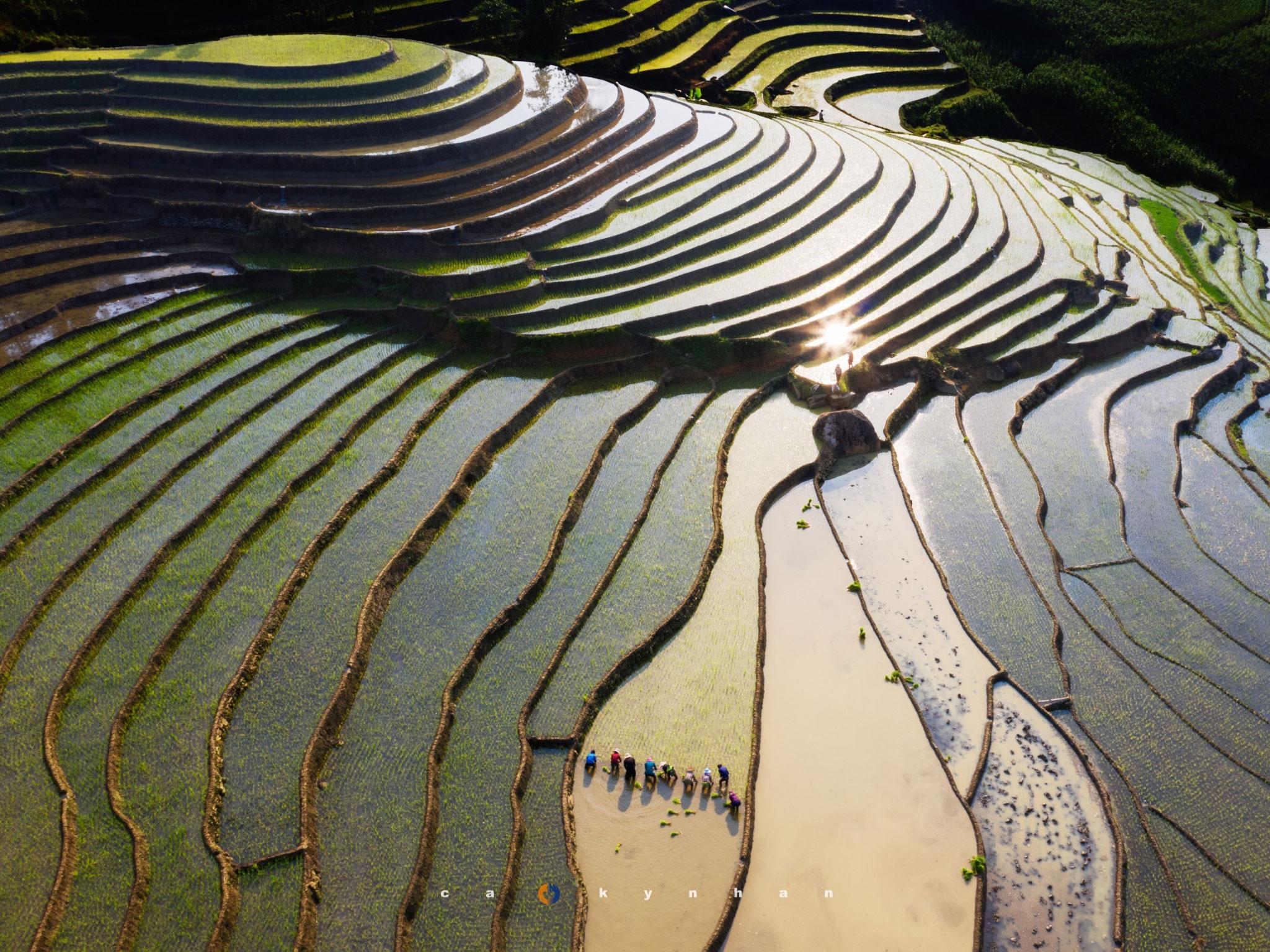 Việt Nam đẹp 'mê hồn' qua ống kính của chàng trai 8x - 3