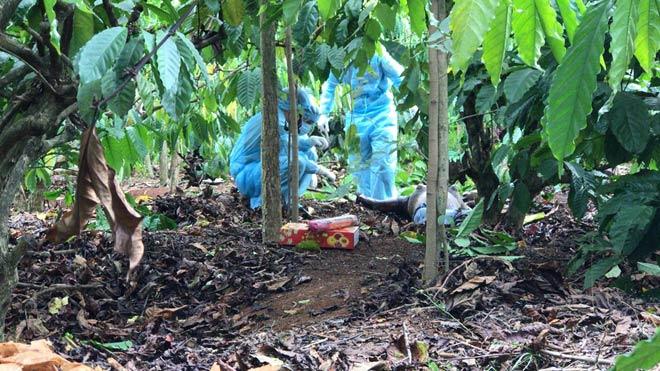 Bi kịch vợ simê đồng nghiệp, chồng bị sát hại rồi giấu xác trong vườn điều - 1