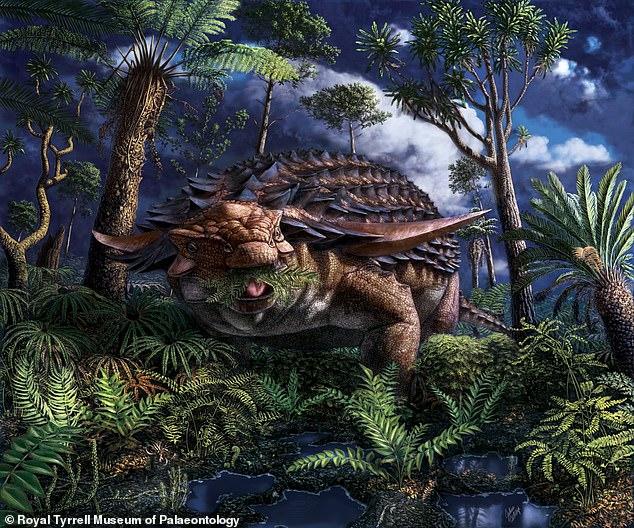 Bữa ăn còn nguyên vẹn trong dạ dày khủng long bọc giáp cách đây 110 triệu năm - 1