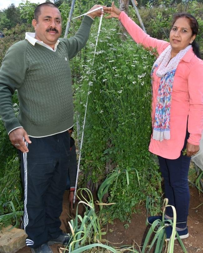 Năm nay 47 tuổi, người nông dân chuyên trồng cây theo phương pháp hữu cơ này vừa khiến mọi người ngạc nhiên với thành quả của mình.