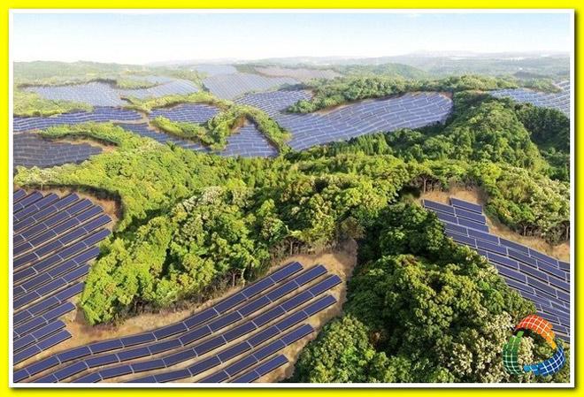 Việt Nam Solar mở ra kỷ nguyên mới với giải pháp điện mặt trời cho nông nghiệp - 1