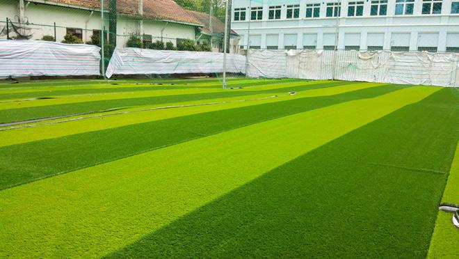 Cỏ nhân tạo - giải pháp hoàn hảo cho sân bóng đá và khu vườn xanh - 1