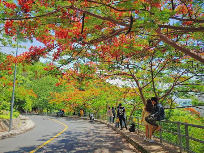 Giới trẻ Sài Gòn truyền tai nhau trải nghiệm con đường mùa hè đẹp nhất thành phố biển Vũng Tàu - 1