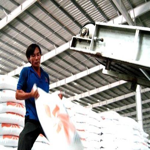 Mua tạm trữ nửa triệu tấn gạo - 1