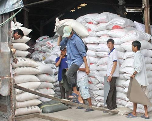 Mua tạm trữ gạo: giá khó đột biến - 1