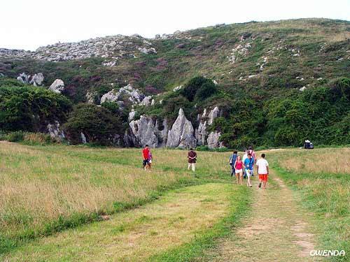 Bãi biển nằm giữa đồng cỏ xanh ở Tây Ban Nha - 1