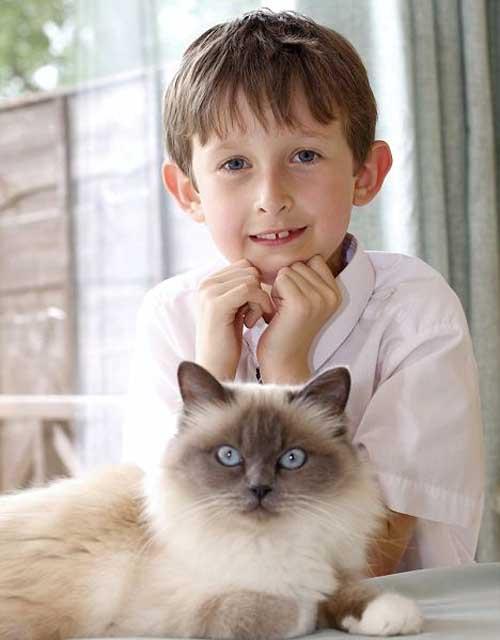 """""""Thầy"""" mèo dạy nói cho cậu bé câm - 1"""