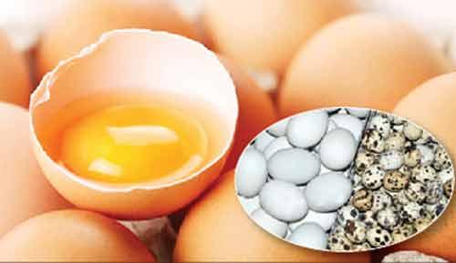 Ăn trứng nào tốt cho sức khỏe? - 1