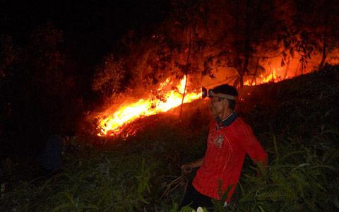 5 vụ cháy rừng liên tiếp, nghi bị đốt - 1