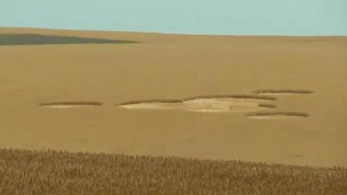 Vòng tròn bí ẩn xuất hiện trên cánh đồng - 1