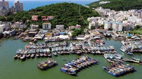 Trung Quốc xua 23.000 tàu cá xuống biển Đông - 1
