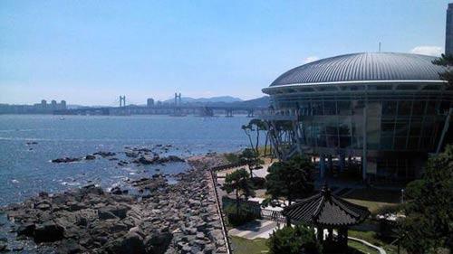 Vẻ đẹp quyến rũ của biển Busan Hàn Quốc - 1