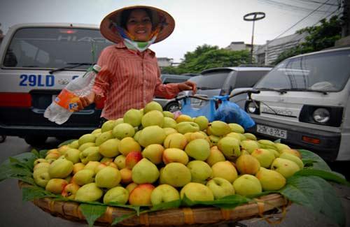 """Rau quả Trung Quốc giá... """"trên trời"""" - 1"""