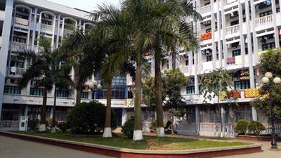 Sinh viên lo chỗ ở và gánh nặng chi phí - 1