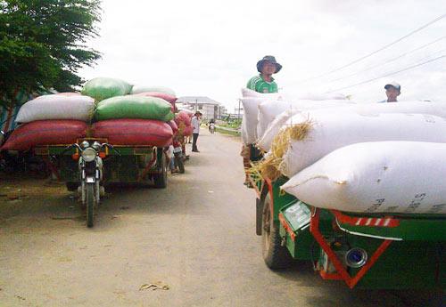 """Gạo Việt """"chảy"""" sang Thái Lan - 1"""