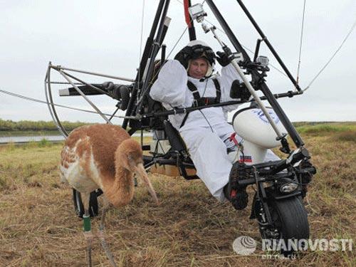 Ông Putin thừa nhận dàn dựng pha nguy hiểm - 1