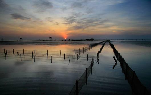 Đến Thái Bình ngắm cồn biển đẹp nhất miền Bắc - 1